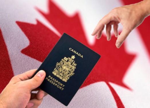 加拿大联邦技术移民—熊小姐