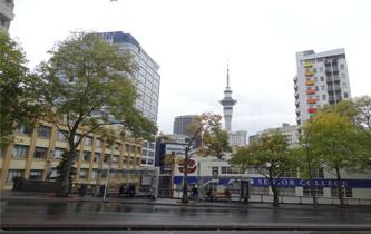 新西兰有哪些移民方式?怎么选择才合适?
