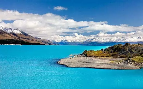 新西兰创业移民:12月09日EOI海选打分新鲜出炉