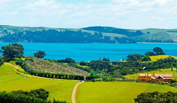 新西兰创业移民项目